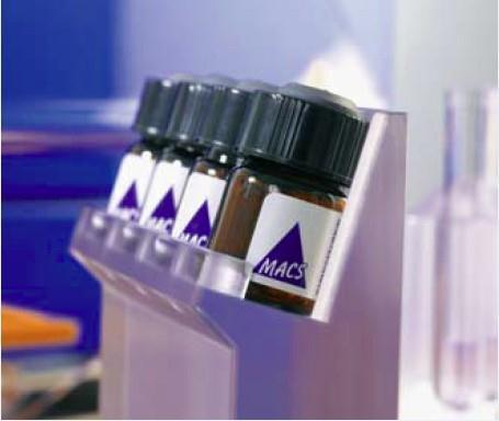 全自动免疫磁珠细胞分选仪(macs)