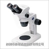 OLYMPUS 体视SZ51显微镜 SZ51