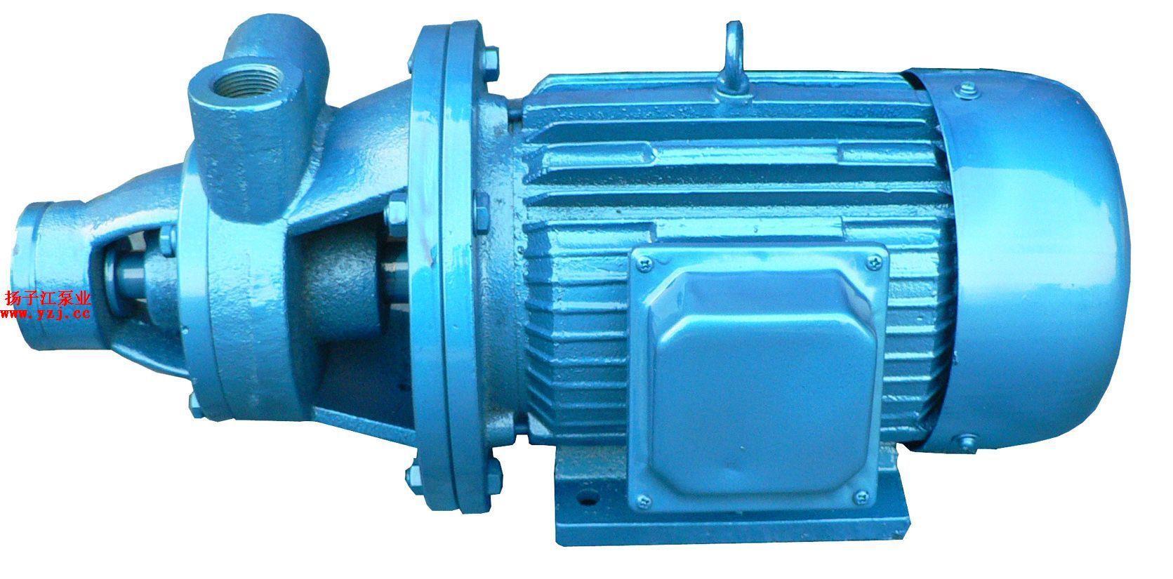 扬子江漩涡泵系列