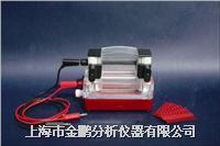 双胶迷你垂直电泳仪RDY-CZ2  RDY-CZ2