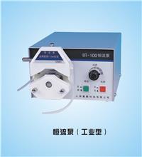BT-100/BT-200/BT-600型恒流泵 BT系列