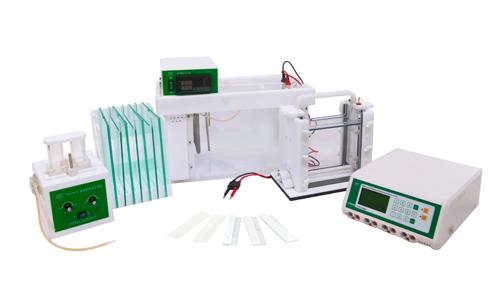 君意JY-TD331变性梯度凝胶电泳系统|伯乐变性梯度凝胶电泳仪|进口品质|上海总代理