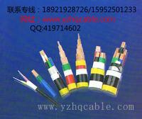 CJPJ90聚烯烃护套船用铠装电力电缆