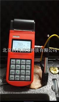 TH110便携式里氏硬度计