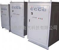 TESGCZ单相柱式电动调压器 TESGCZ