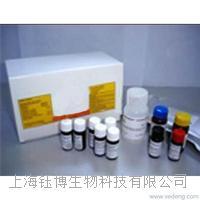 血管紧张素转化酶(ACE)检测试剂盒
