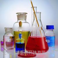 脯氨酰4-羟化酶α多肽Ⅱ(P4Ha2)单克隆抗体